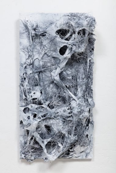 Steve Seleska: At the Intersection of Art and Science
